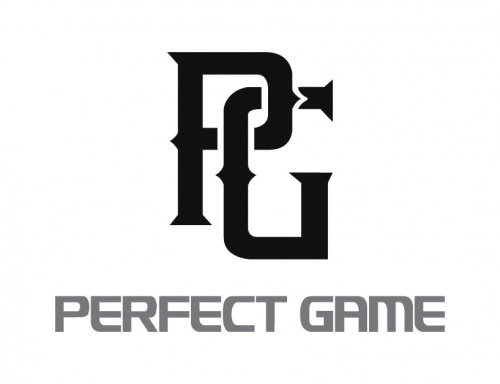 Perfect Game baseball